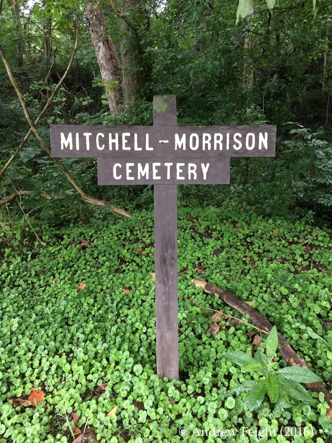 Mitchell-Morrison Cemetery, Moore's Run, Shawnee Backcountry Management Area, Shawnee State Forest, Scioto County, Ohio
