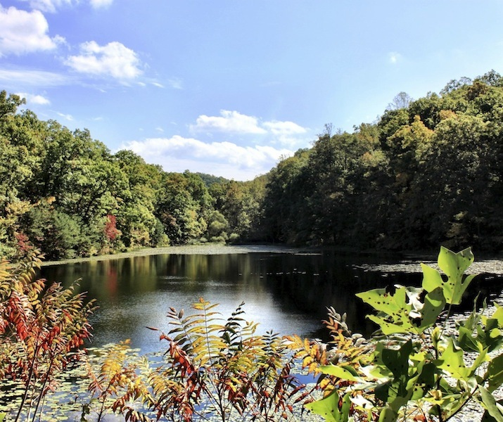 View of Bear Lake, Shawnee State Forest, Scioto County, Ohio (Fall 2012).