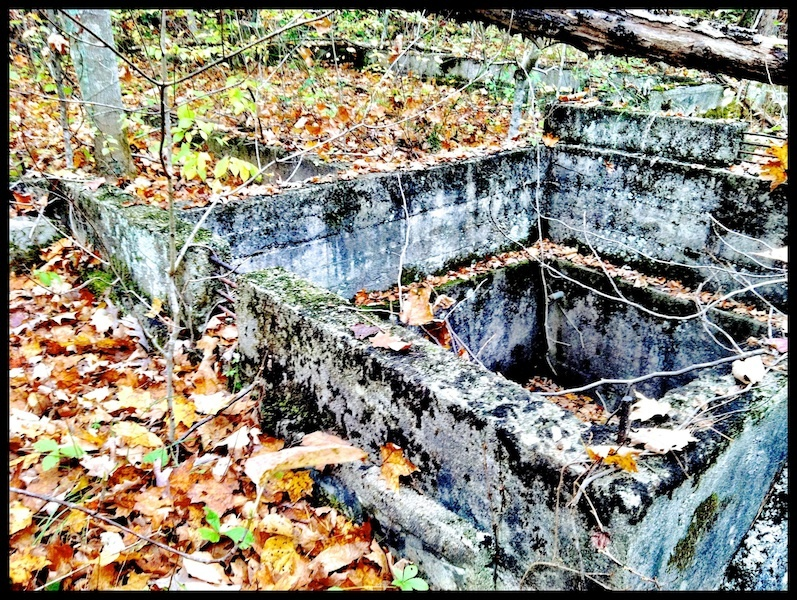 Detail, Ruins of Snake Hollow Forest Experiment Station stone and cement foundation, Shawnee State Forest, Scioto County, Ohio (2013).