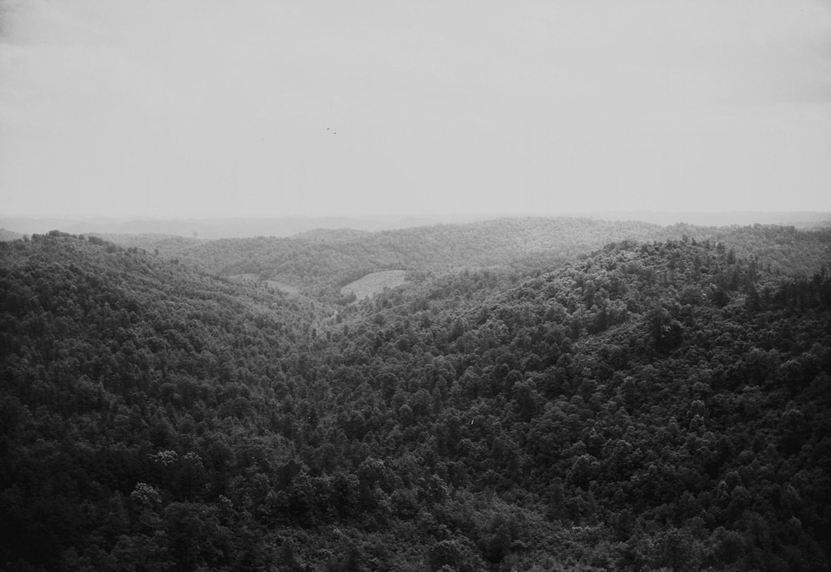View from Copperhead Fire Tower, looking south, Shawnee State Forest, Scioto County, Ohio (c. 1934)