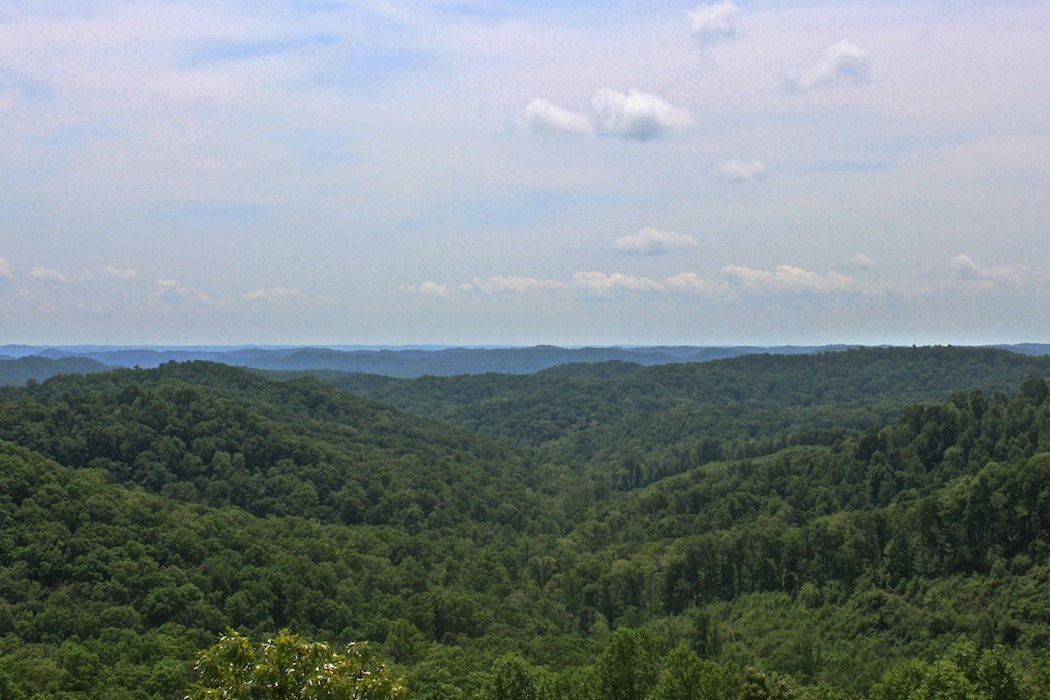 View from Copperhead Fire Tower, looking south, Shawnee State Forest, Scioto County, Ohio (13 April 2011).
